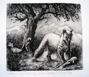 Лъвицата